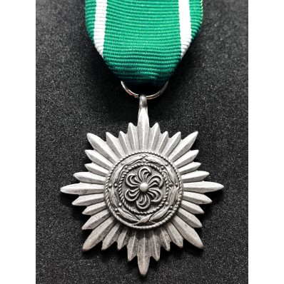 Medaglia Ostvolk di Seconda Classe (Argento)