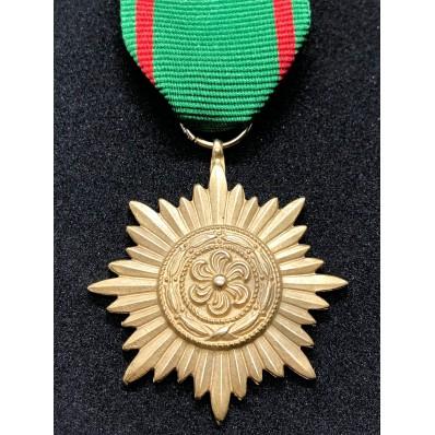 Ostvolk Medal 2nd Class (Gold)