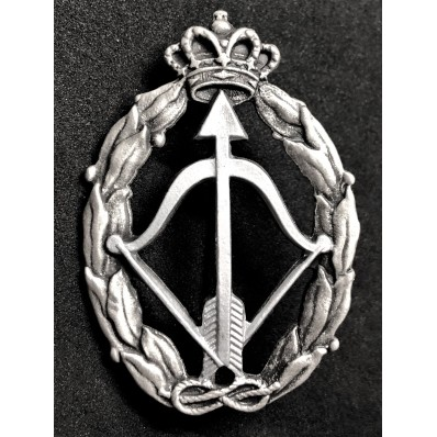 Badge for War Actions, interceptor airplane - of RR.AA. (Silver)