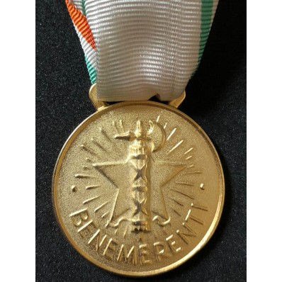 Medal to the praiseworthy of the italian Red Cross (Gold)