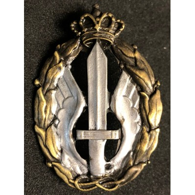 Air Force Badge for war actions, Assault and Combat (Silver)