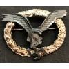 Pilot Badge (Oval)