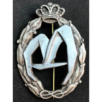 Badge for War Actions, Transport - of RR.AA. (Silver)