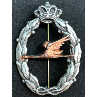 RR.AA Relief Spezialist Abzeichen (Bronze)