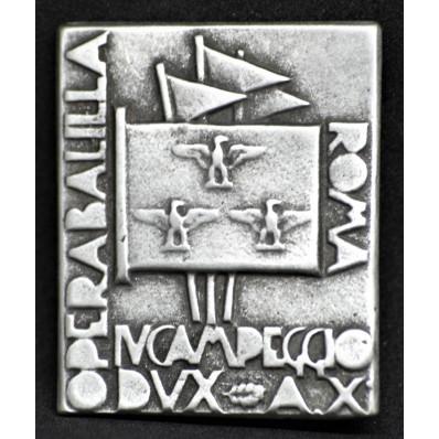 "Distintivo ""IV Campo Dux"""
