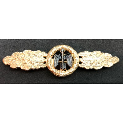 Short Range Day Fighter Clasp (Gold)