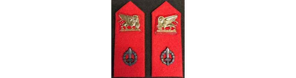 Cloth Insignias